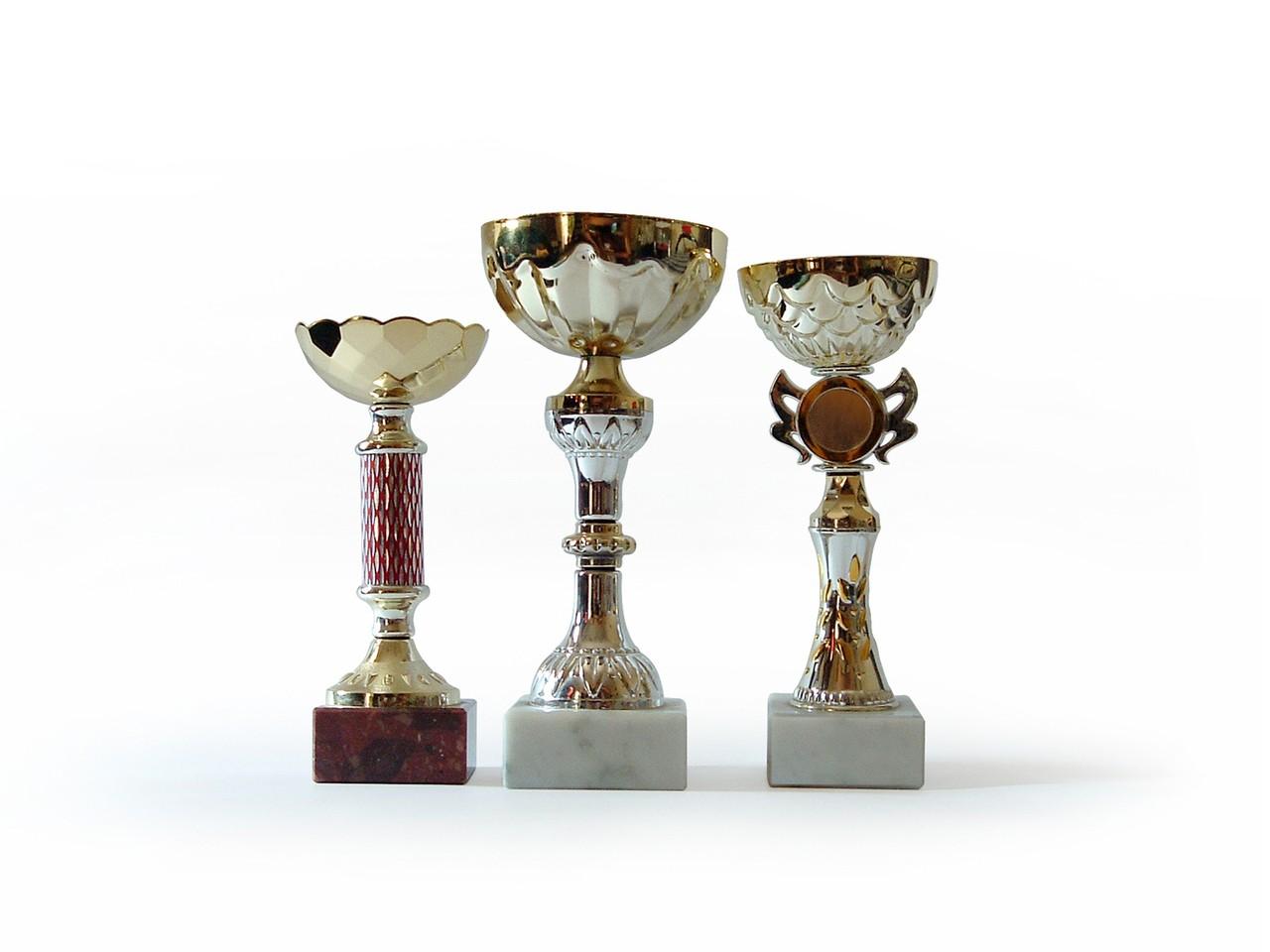 Na szkolnych zawodach także mają być trofea i nagrody